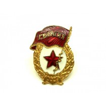 Insignia Pin Guardia
