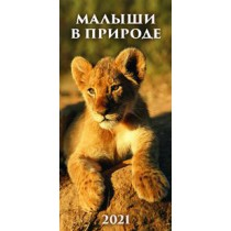 """Настенный календарь """"Малыши в природе"""